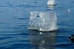 Pedazos transparentes de hielo Foto de archivo libre de regalías