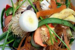 Pedazos vegetales en una bio basura del bowlbio plástico blanco Fotos de archivo libres de regalías