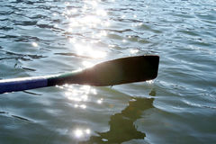 Peddel in water Royalty-vrije Stock Afbeeldingen