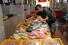 Peddler Sale Fresh fishes in market Stock Photo