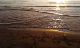 Pede plaża Fotografia Royalty Free