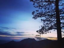 Pedernales понижается парк штата стоковые фото