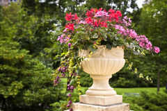 Pedestal Garden Planters Stock Photo