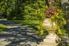 Pedestal Planter Royalty Free Stock Images
