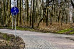 Pedestre pavimentado e trajeto de ciclagem com diretrizes integradas para povos com prejuízo visual foto de stock