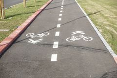 Pedestrian and bicycle riders sharing the street lanes with road marking in the city. Pedestrian and bicycle riders sharing the street lanes with road marking stock photo