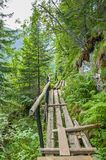 Pedestrian bridge in Carpathians mountains Stock Photos