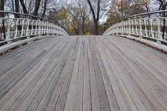 Pedestrian bridge on Central Park, New York. Photo shot from inside Central Park in New York Stock Image