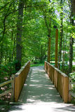 Pedestrian Bridge in Forest Stock Photo