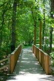 Pedestrian Bridge in Forest. A photo of a pedestrian bridge leading through a forest Stock Photo