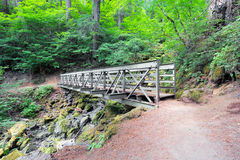 Pedestrian Bridge at Hiking Trail Stock Photography