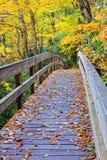 Pedestrian Bridge in Mountains North Carolina Royalty Free Stock Photo