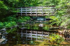Pedestrian Bridge Refection in Ricketts Glen State Park of Pennsylvania royalty free stock images