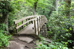Pedestrian Bridge Trail Blue Ridge Mountains NC. A footbridge along the Tanawha trail helps hikers traverse through fragile ancient ecosystems and a diverse Stock Photo