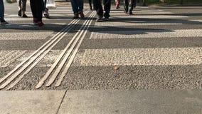 Pedestrian cross over road by zebra crossing in city stock video footage