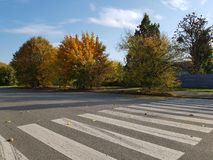 Pedestrian crossing in autumn on sunny day royalty free stock photos