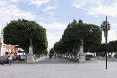 Pedestrian crossing at Av. De los Héroes, León Guanajuato royalty free stock photo
