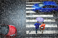 Pedestrian crossing in the heavy snowfall Royalty Free Stock Photos