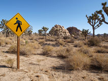 Pedestrian Crossing Joshua Trees. Pedestrian crossing sign in the middle of California's Joshua Tree Desert Royalty Free Stock Image