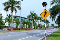 Pedestrian crossing road sign with red traffic light, empty city street with palm trees and flowers stock photos