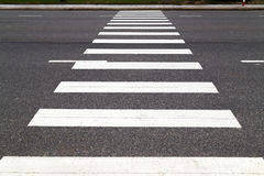 Pedestrian crossing on the road Stock Photos