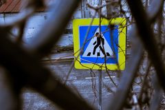 Pedestrian crossing sign through the branches and metal fence royalty free stock photo