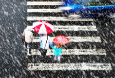 Pedestrian crossing in tzhe snowstorm Stock Images