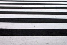 Pedestrian crosswalk texture Stock Image