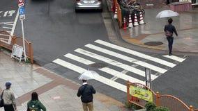 Pedestrian go via the crossing in Tokyo, Japan stock video footage