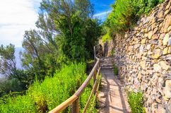 Pedestrian hiking stone path trail with railing between Corniglia and Vernazza villages with green trees, blue sky background, Nat. Ional park Cinque Terre, La stock image