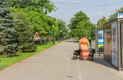 Pedestrian part of Yavornytskyi Avenue at summer weekend in Dnepr city. Dnepr, Ukraine - August 24, 2016: Pedestrian part of Yavornytskyi Avenue at summer stock photo