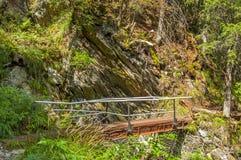 Pedestrian pass in Carpathians mountains Royalty Free Stock Photo