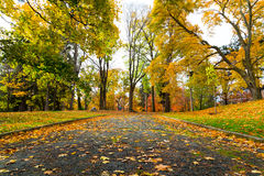 Pedestrian Path in Canada in the Fall Royalty Free Stock Photos