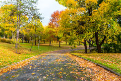Pedestrian Path in Canada in the Fall Royalty Free Stock Images