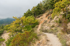 Pedestrian path in Crimean mountains Royalty Free Stock Photography