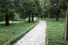 Pedestrian path in the forest park Royalty Free Stock Photography