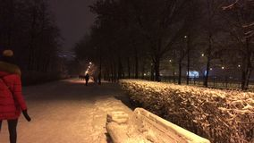 A pedestrian path at night in city Park stock video