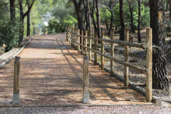 Pedestrian path. Stock Images