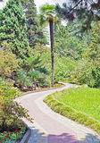 Pedestrian path for walks in the Sochi Arboretum. In the Sochi Arboretum. Pedestrian path for walks Stock Photo