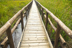 Pedestrian path on wooden poles Stock Image