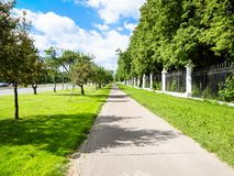 Pedestrian pathway with green lawn and apple trees. Along Moscow State University garden on street Prospekt Vernadskogo in Moscow city in sunny summer day stock image