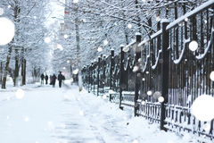 Pedestrian sidewalk the fence winter Royalty Free Stock Image