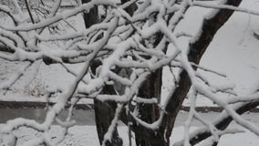 Pedestrian in snow stock footage