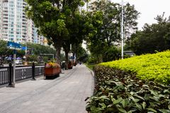 Pedestrian stone walkway, steel black fence next to the road. Large wooden flower bed with colorful flowers. Walking path in guangzhou leisure park stock image