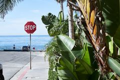 Pedestrian street road sign stop near the ocean or a pond sunny. Day, road, car, greenery summer heat, California, resort, walk through the city, resort Royalty Free Stock Photography