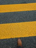 Pedestrian stripe on pavement with feet. Yellow pedestrian stripe on pavement with feet stock photo