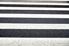 Pedestrian stripes Stock Photography