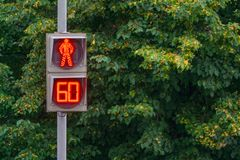 Pedestrian traffic light glowing red counting out last minute. Pedestrian traffic light glowing red, counting out last minute, a background of green trees sign Stock Photo