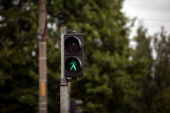 Pedestrian traffic lights with red stop signal.  Royalty Free Stock Photography