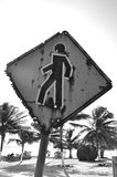 Pedestrian traffic sign with bullet holes. A sign indicates a crossing for PEDESTRIANS with bullet holes in a resort area with palm trees Royalty Free Stock Image
